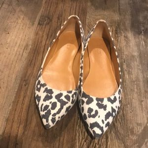 J Crew Navy and White Canvas Leopard Flats 9.5